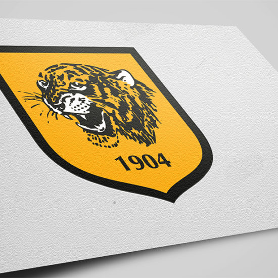 Hull City 1 2